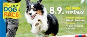 Zoodom Dog Race - Logo